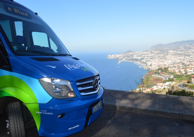 Funchal Viewpoint
